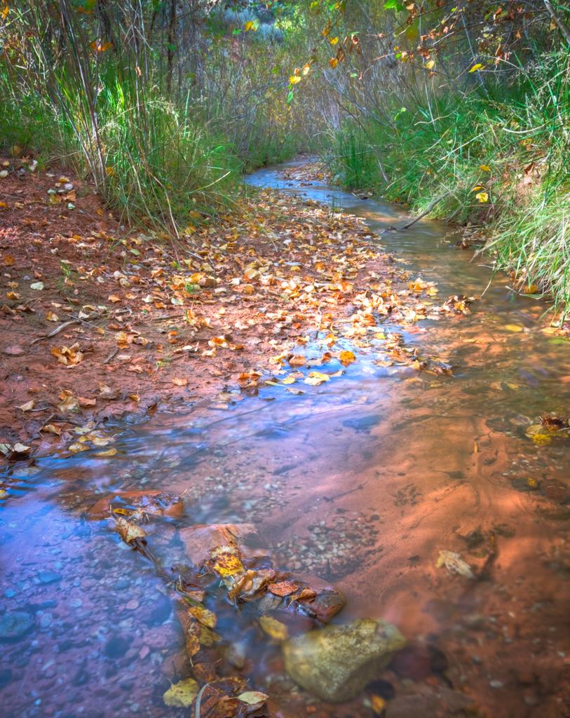 Spring Creek, Southern Utah